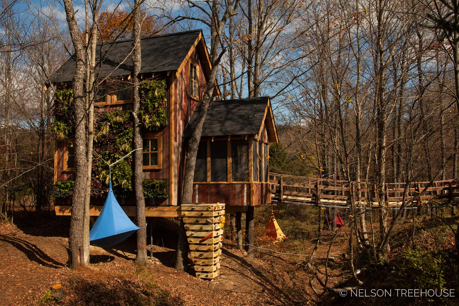 Nelson Treehouse - Adventure TEmple Rock Wall