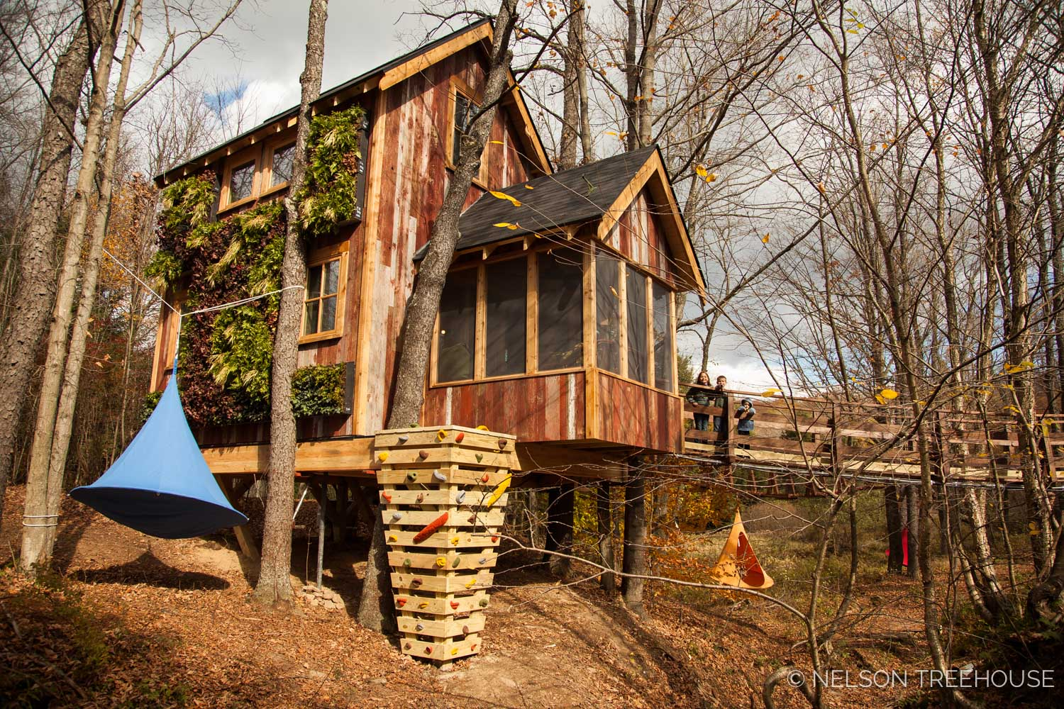 Nelson Treehouse - Adventure TEmple live wall